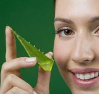 Интерестные полезные свойства Алоэ, готовым маску для лица в домашних условиях.
