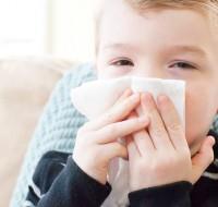 Применяем Каланхоэ, как лечение от насморка детям. На заметку!