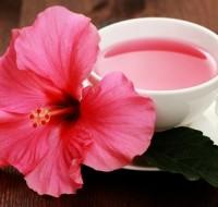 Как влияет на организм Гибискус, узнаем про полезные свойства чая из этого растения.